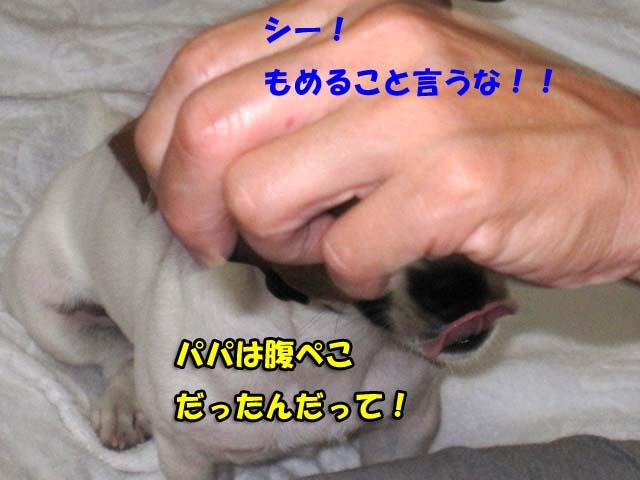 Img_3438_3